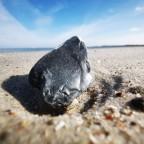 Steinchen am Strand auf dem Priwall