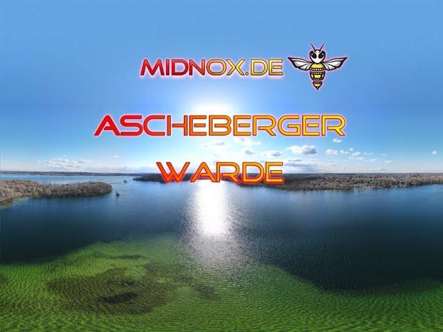 (DROHNE) Ascheberger Warder im Großen Plöner See (SCHWARZ/WEISS)